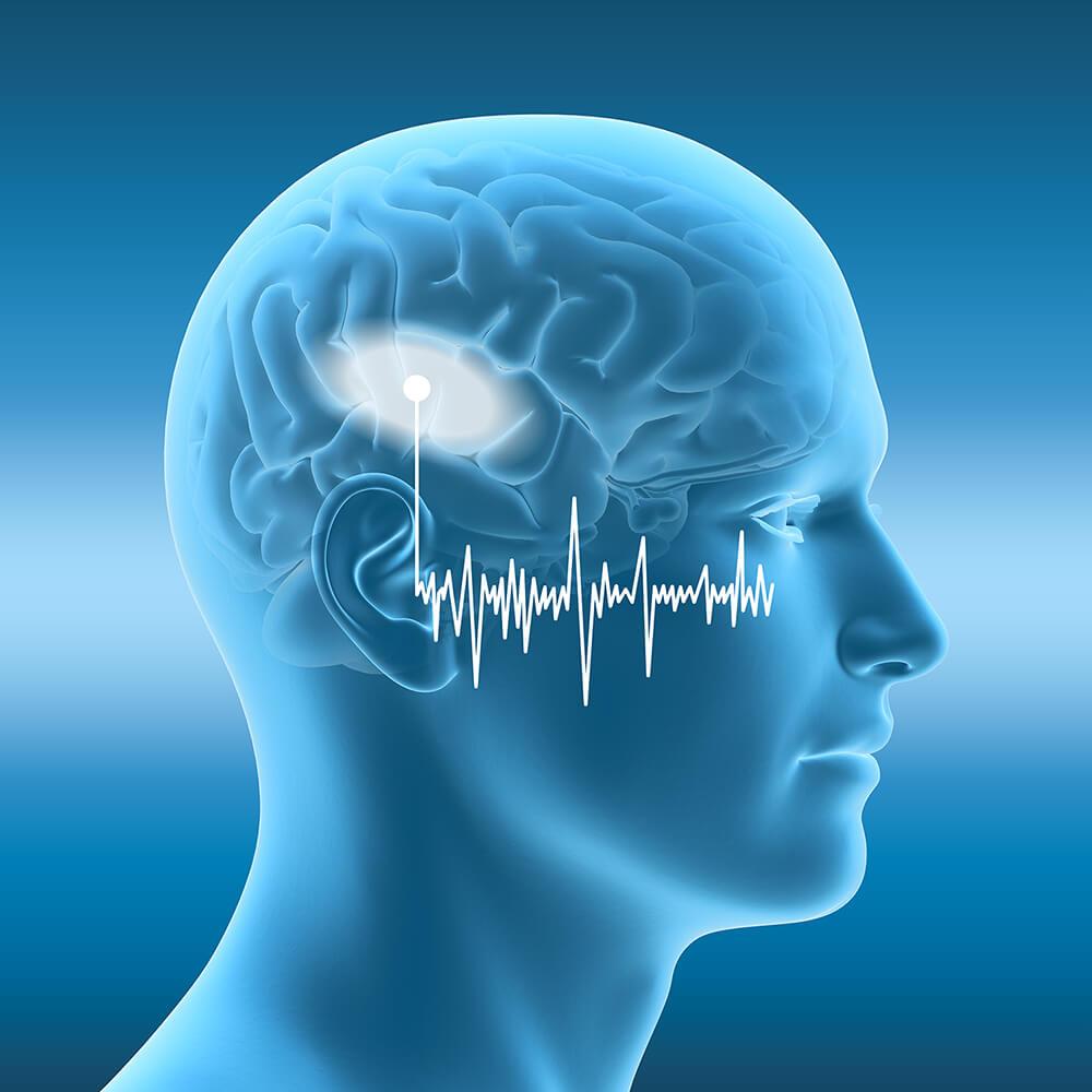 Menschliches Ohr mit Schallwellen und marktiertem Gehirn